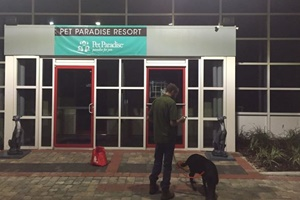 Orlando dog daycare - Bark Avenue Pet Resort